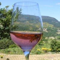 Languedoc Coeur d'Hérault 4